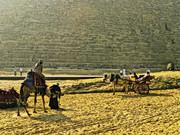 【埃及、土耳其十一日游】(十五)埃及吉萨金字塔图片