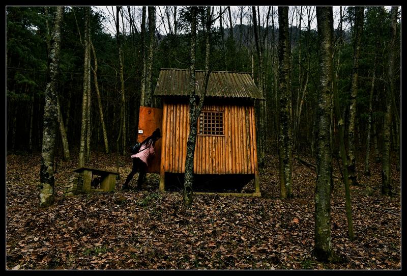 在高山之巅的小木屋,欣赏野趣奇景.