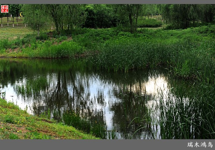 【原创摄影】徒步昌平新城滨河森林公园