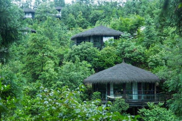 欧式别墅种菜花园设计