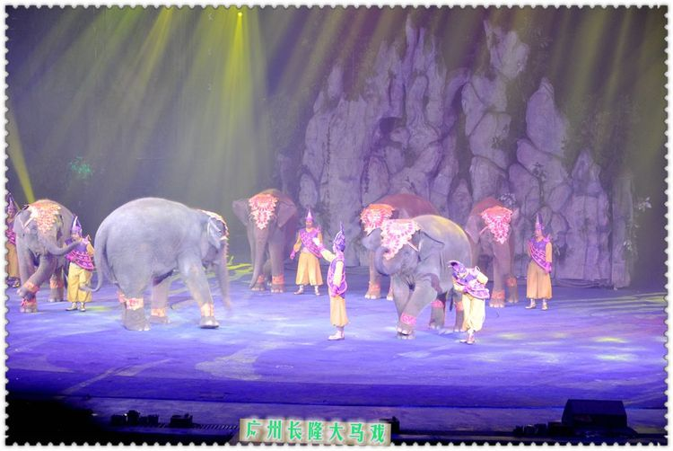 同程首页 攻略社区 广州长隆野生动物园--回到童年  关于大马戏,个人