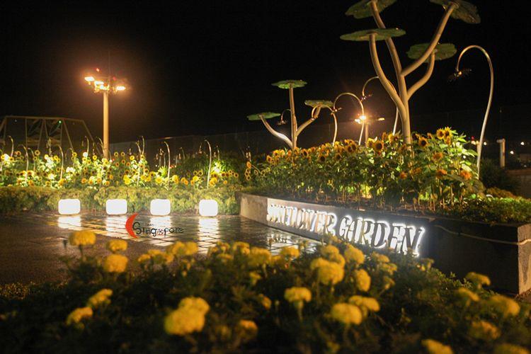 夏夜晚风 南洋三国记---新加坡, 民丹岛, bromo火山