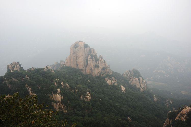 常常是一片葱茏绿树托起形态各异的巨石
