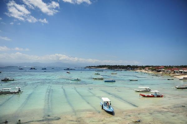 【哔哔巴士会员卡】巴厘岛机场往返接送机(拼车)