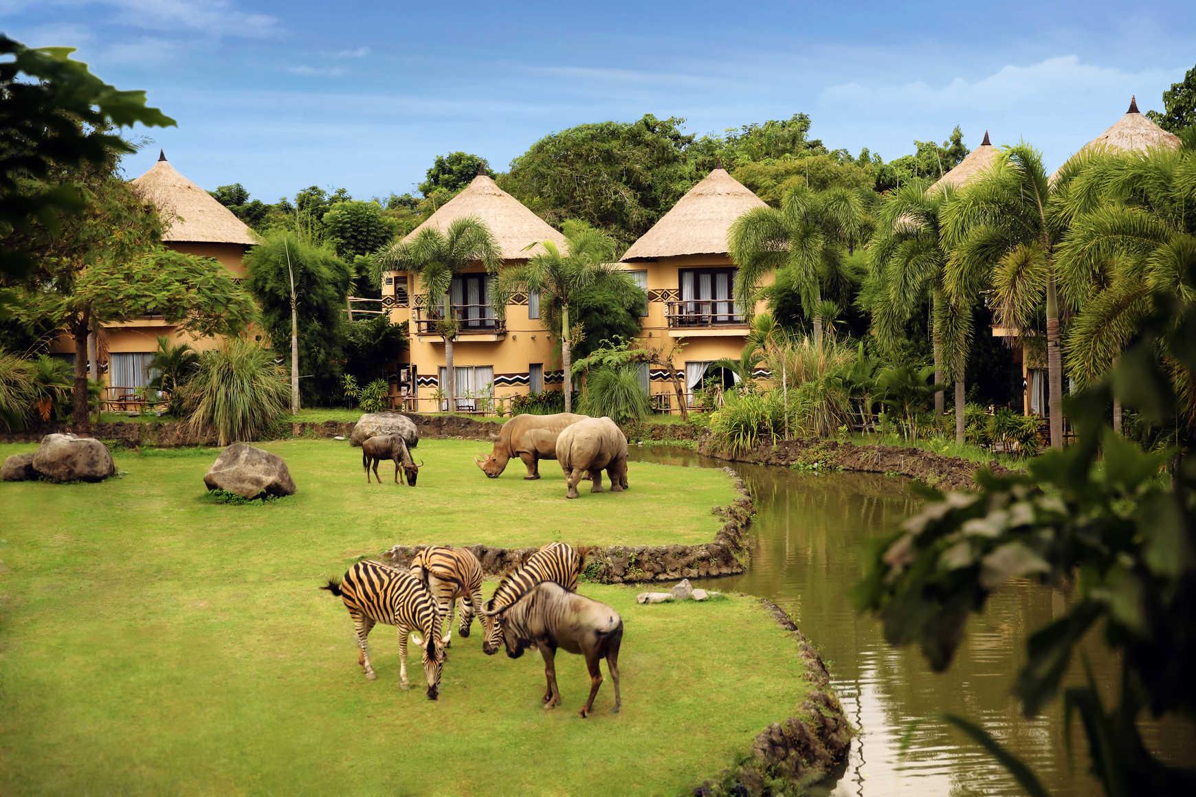 同程首页 海外玩乐首页 巴厘岛野生动物园  与聪明大象,滚圆河马,猩