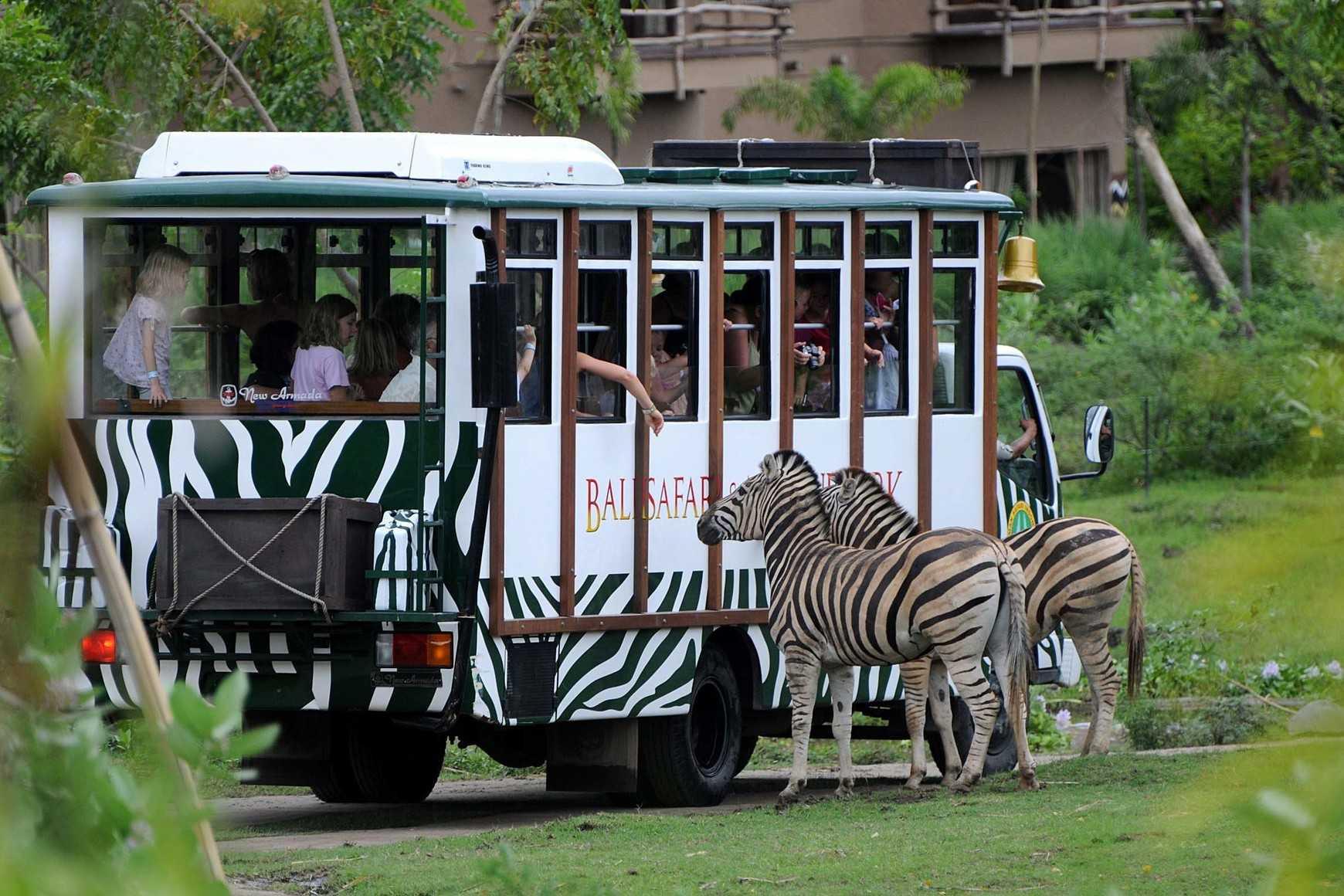 南非太阳城比邻比邻斯堡野生动物园一日游