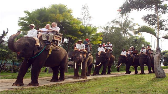 巴厘岛 大象公园骑大象+午餐套票