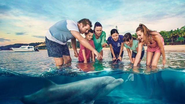 【第一天:抵达海豚岛一日游】 行程安排: 10:0011:15 乘坐渡轮75分钟抵达海豚岛,导游将在码头迎接您,并介绍您的行程情况,并带领您办理酒店注入手续; 12:0012:40 稍作休息,在美妙的海湾风景中,您可以先到餐厅用餐(自费),这里有4家餐厅可供您自由选择; 13:0018:00 您可以在水上活动预定中心,看看您想参加活动有哪些,每项活动都有开始时间,注意安排您的行程时间。在一整天探索 体验天阁露玛各种精彩活动之中,您将体验到海豚岛独特的海岛美丽; 19:00结束 我们的压轴大戏终于