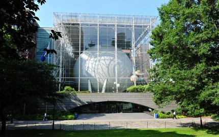 美国自然历史博物馆