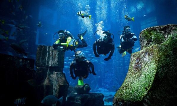 迪拜亚特兰蒂斯 失落的空间 水族馆门票预定,迪拜亚特兰蒂斯 失落的空间 水族馆价格,迪拜亚特兰蒂斯 失落的空间 水族馆评价,攻略 同程旅游