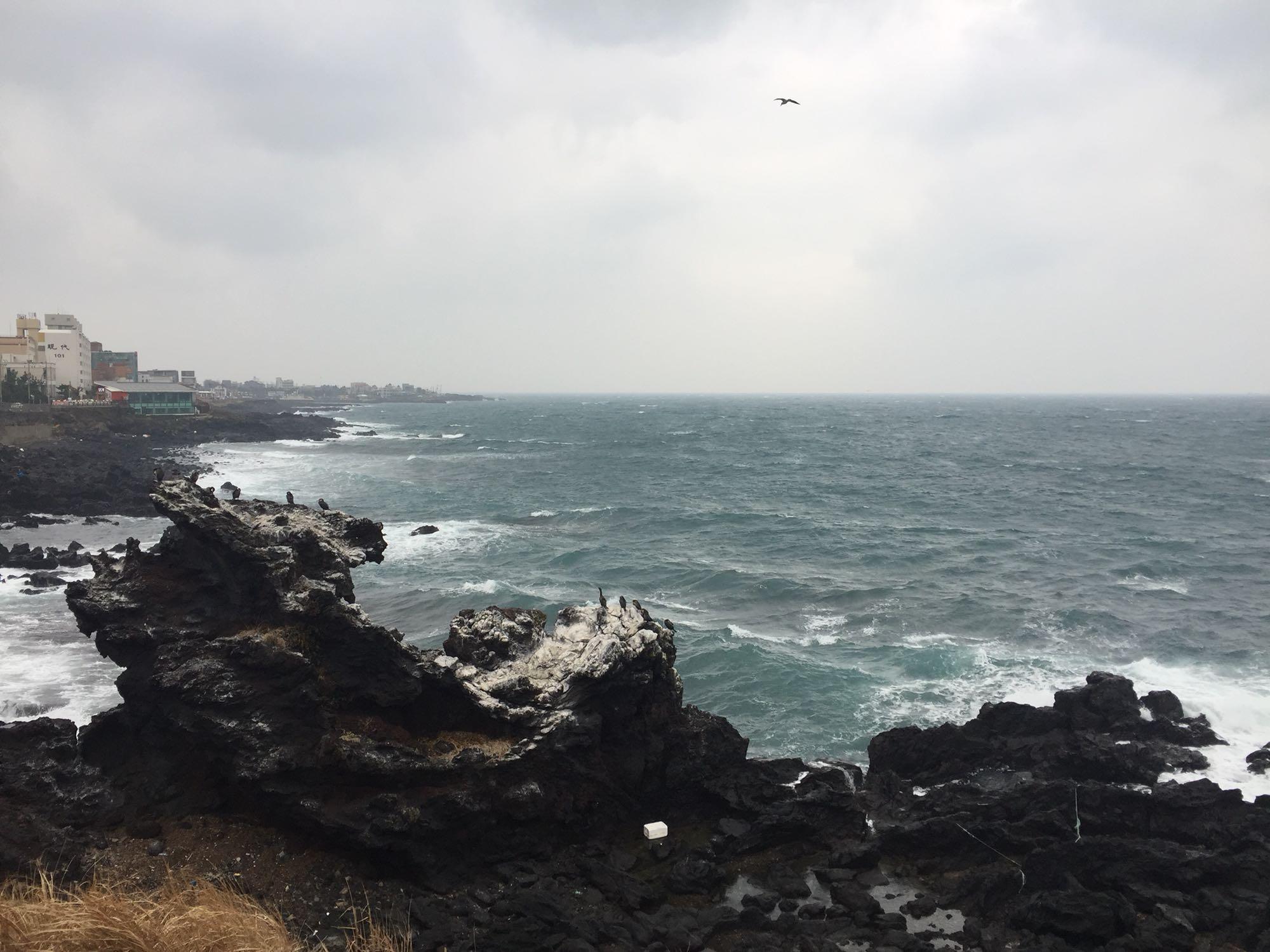 【品质】韩国济州岛4日半自助游_上海到济州岛跟团