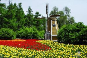 湖南省森林植物園