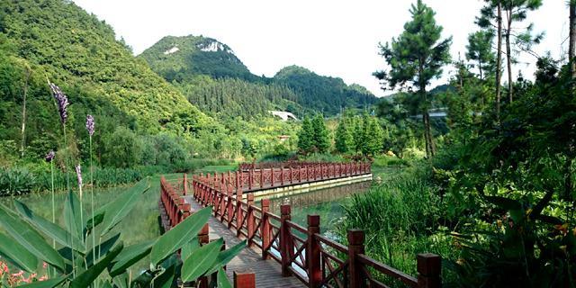 花溪河畔有小山数座参差其间,或突兀孤立,或蜿蜒绵亘.