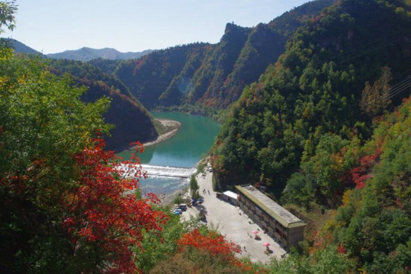 理由1 坡陇原始森林旅游风景区位于叶城县以南,新藏线219国道柯克亚乡
