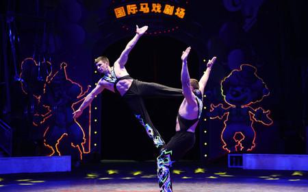 上海野生动物园门票+探秘