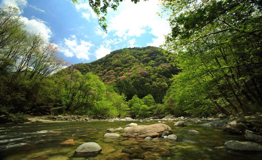 唐家河自然保护区位于四川盆地西北缘青川