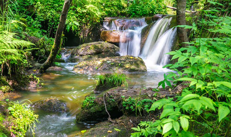 五营国家森林公园门票 五营森林公园门票多少钱 伊春五营国家森林公园 五营国家森林公园 同程旅游门票预订