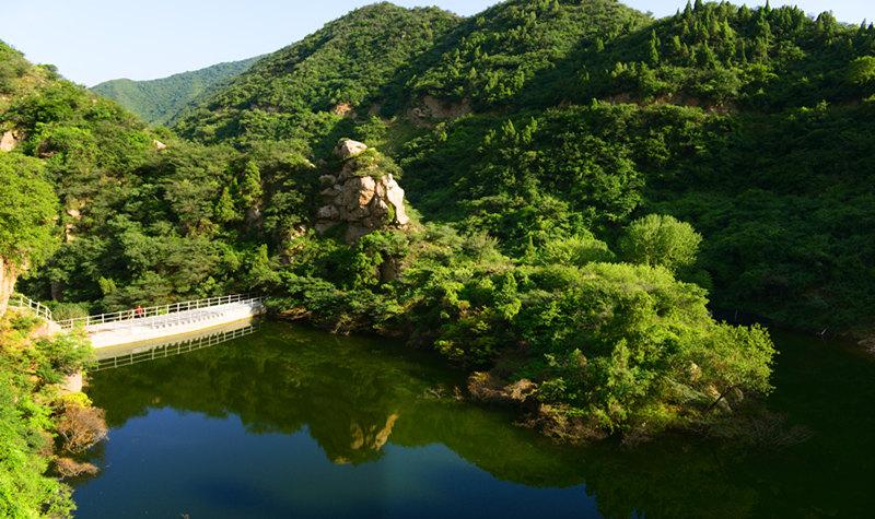 丰富的动物种类 神潭大峡谷风景区