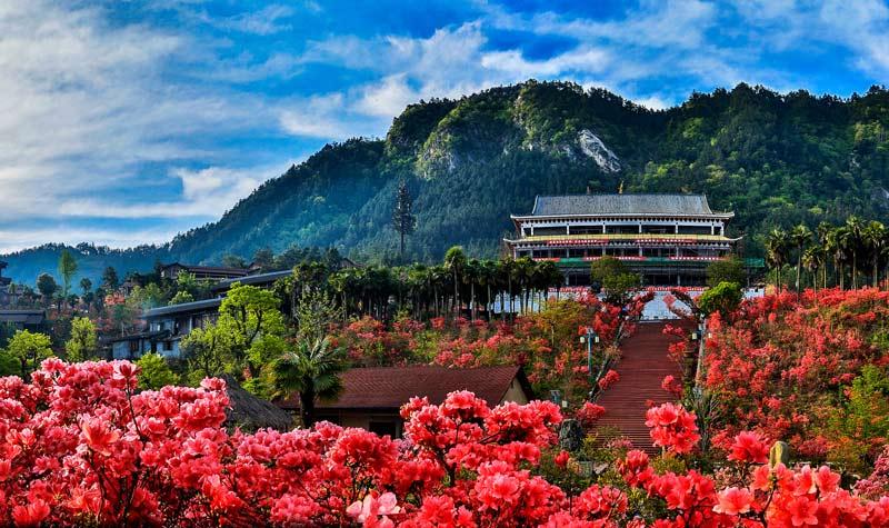 大别山映山红生态文化大观园