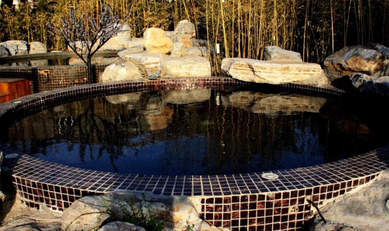 阳光丽城蝴蝶泉温泉