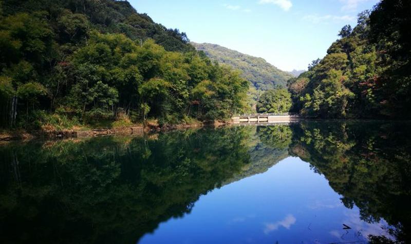 新丰江国家森林公园桂山风景区
