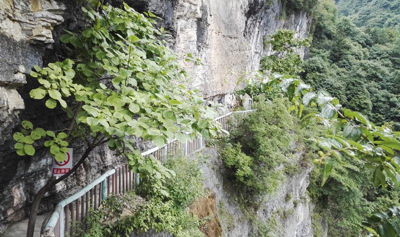 猴耳天坑风景区