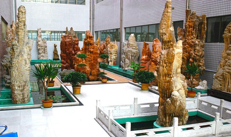 天宇自然博物馆