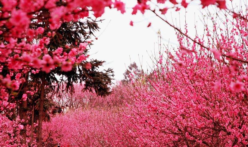 安徽浮山风景区