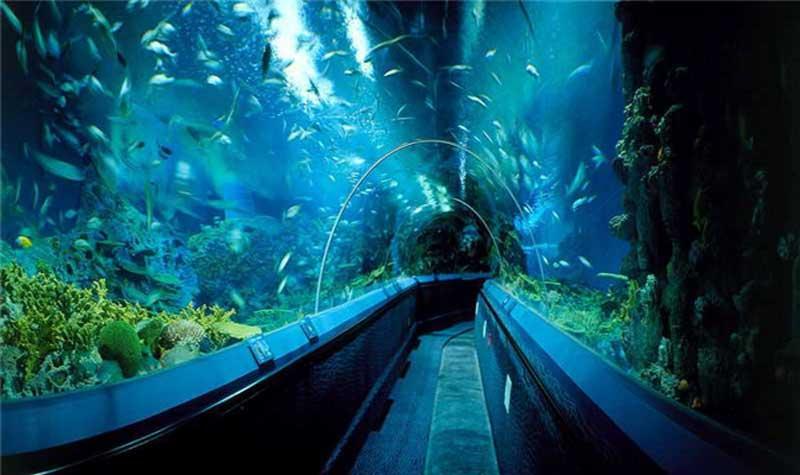 蚌埠海贝海洋乐园