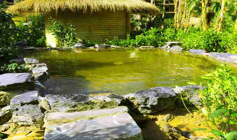 九龙洞温泉度假庄园