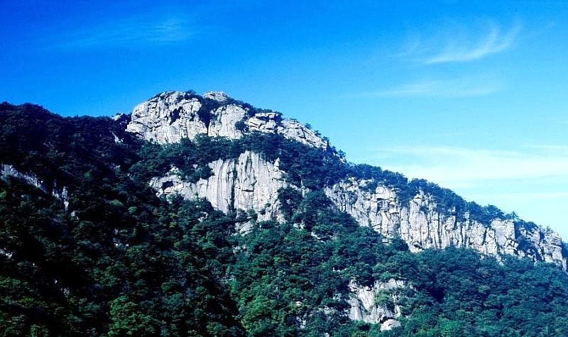 山东森林旅游年票