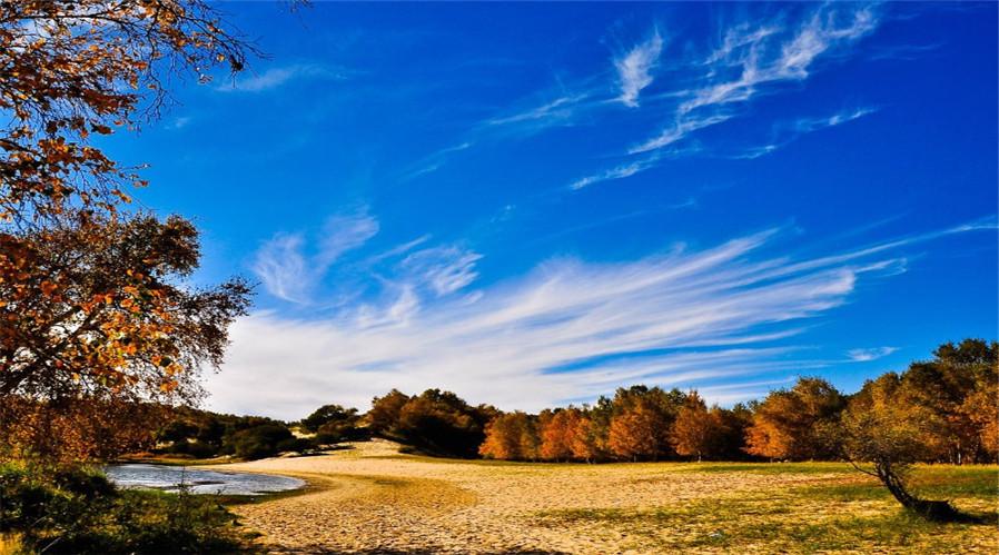 秋季风景简笔画彩色